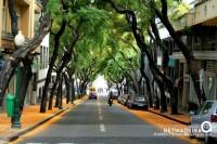 Avenida Zarco pintada