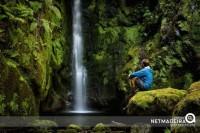 Encantos na nossa ilha da Madeira
