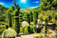 Jardim Botanico - Ilha da Madeira