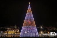Pinheiro de Natal no Funchal