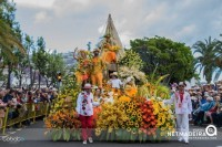 Festa da flor - Ilha da Madeira