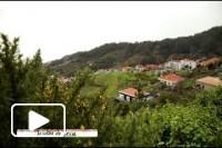 Recantos da Madeira dao a conhecer Jardim da Serra