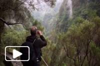 Madeira PR9 Levada do Caldeirão Verde