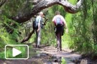 Levada 25 Fontes na Ilha da Madeira